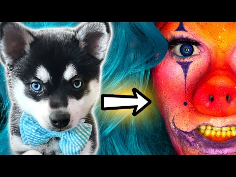 PUPPY Picks My FX Makeup