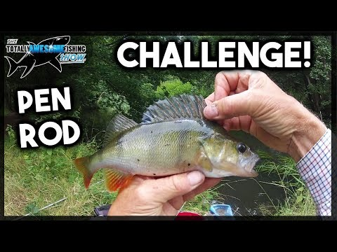 Fishing PEN ROD CHALLENGE - 4 Species In A DAY!
