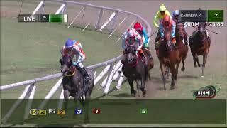 Vidéo de la course PMU PREMIO ONLY PROFIT