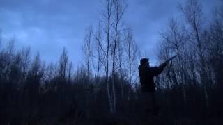 Охота на вальдшнепа в Сибири