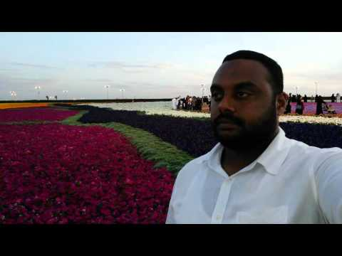 Flower & Garden Festival. Yanboo , Saudi Arabia