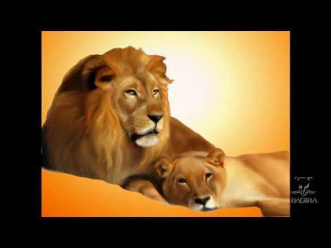 львов фото секс знакомства