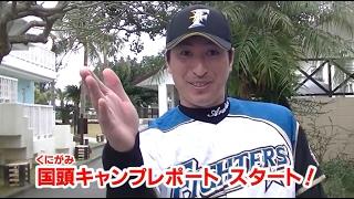 国頭キャンプ第2クール始動!! 2/7【2017春季キャンプ】