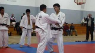 Judo Combinations