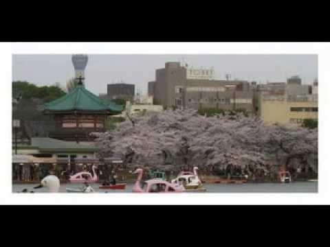 Japan travel guide Ueno-kōen | Tokyo Travel Ueno Park