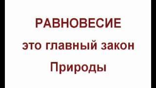 373. Обучающие Видеокурсы по ТИХОМУ СИДЕНИЮ