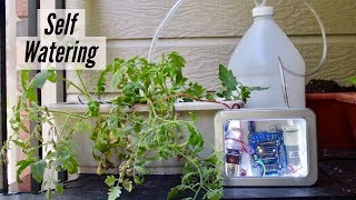 How to Make Self Watering System at Home - Easy DIY