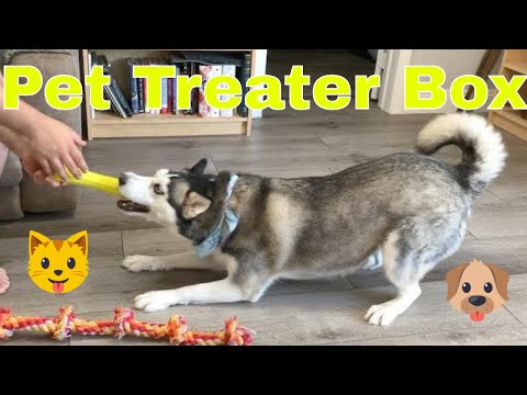 """PetTreater's 🐶 Canine June 2020 """"Under The Sea"""" Subscription Box - Unboxing. Plus coupon code! from YouTube · Duration:  20 minutes 42 seconds"""