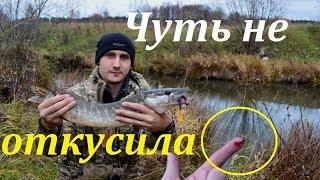 Щука на джиг Осенью Рыбалка в октябре Щука напала на палец