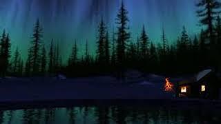 أصوات الطبيعة ليلا   The sounds of nature at night