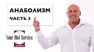 Анаболизм • Часть 3 ► Роман Матияш ► Your Diet Service