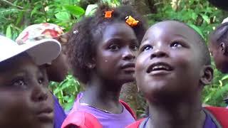 dans la forêt des malgaches