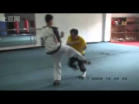 Baji Quan Applications by Master Li Tianhua