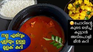 Kerala fish curry|Meen mulakittathu curry|മീൻ മുളകിട്ടത്|without coconut 2019