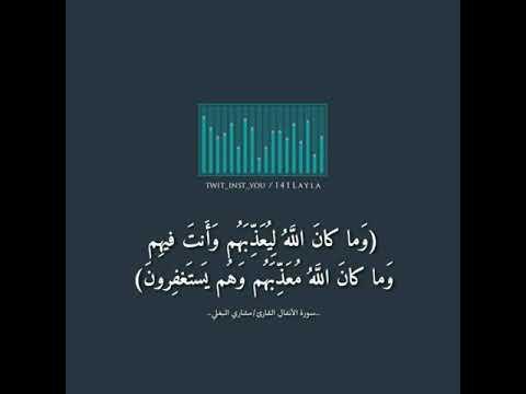 وما كان الله ليعذبهم وأنت فيهم وما كان الله معذبهم وهم يستغفرون مشاري البغلي Youtube