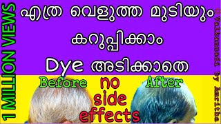മുടി കറുപ്പിക്കാം നാച്ചുറൽ ആയി || 💯 #natural_hair_dye || ente valkannadi