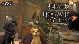 Dagis eigener Streichelzoo! 😍   Harry Potter: Hogwarts Mystery #177