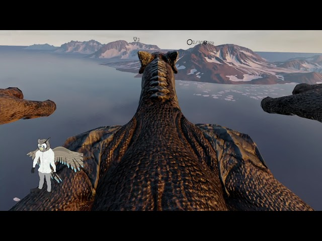 Owl plays all of DragonRide VR