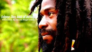 Takana Zion Best Of Reggae Mixtape By DJLass Angel Vibes (June 2018)
