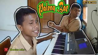 Download lagu Paleng Bae...   Cover Aldy Tunanetra_SLBN.Komodo   