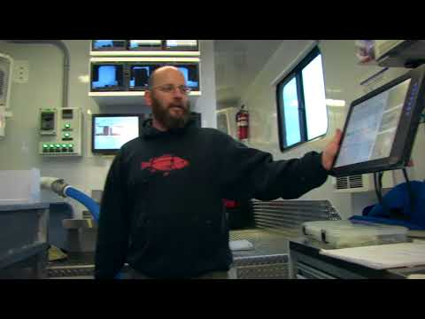 Tagging Millions Of Salmon And Steelhead With Automated Fish Marking Systems