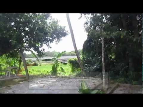 Rumah Teres 1 Tingkat Kos Sederhana Lot Tepi Pulau Pinang untuk di ...