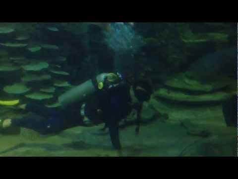 VinPearl Land Mermaid
