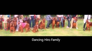 ダンシング・ヒロ・ケンネル主催 スプリング パーティーの模様子です。...