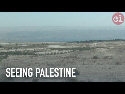 Seeing Palestine