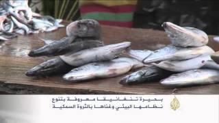 بحيرة تنجانيقا ببوروندي.. تنوع بيئي غني بالثروة السمكية