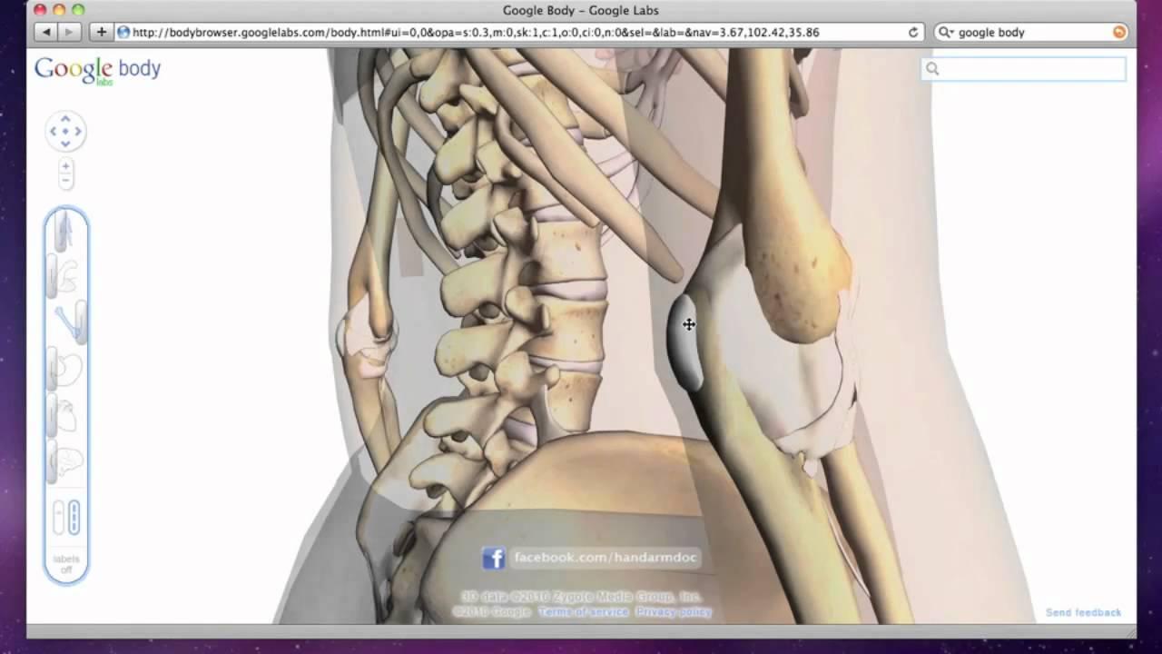Elbow Bursitis - Olecranon Bursa Swelling and Inflammation - YouTube