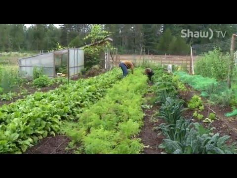 Transfarmations - Urban Farming On Vancouver Island