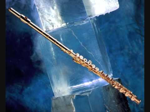 Metallica-  Fade To Black on flute