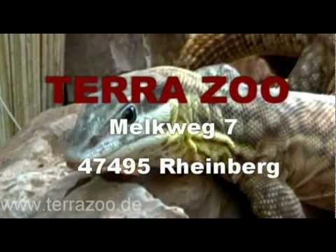 TerraZoo Rheinberg