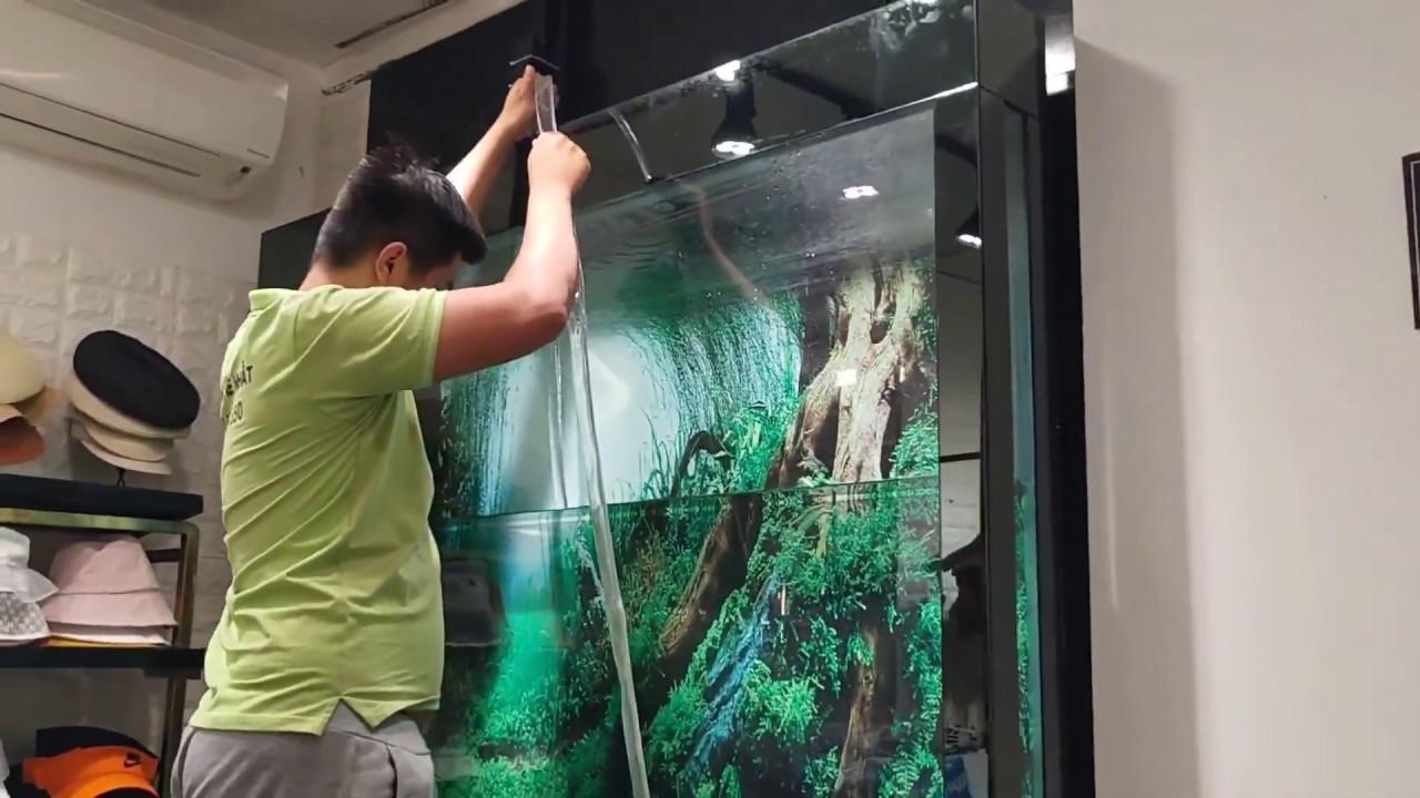 Vận chuyển hồ cá cảnh chuyên nghiệp TPHCM