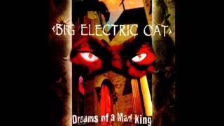 Big Electric Cat - Red Roses
