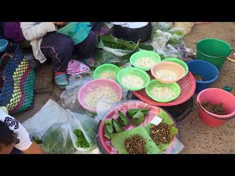 เดินตลาดช่องเม็ก ตลาดเช้า ชายแดนไทย-ลาว จ.อุบลราชธานี