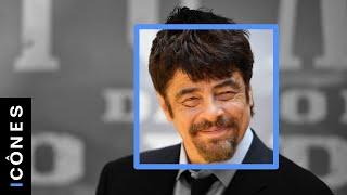 Le dernier amour de Benicio del Toro