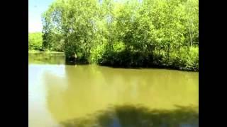 FRAMFIELD PARK FISHERIES, UCKFIELD, EAST SUSSEX