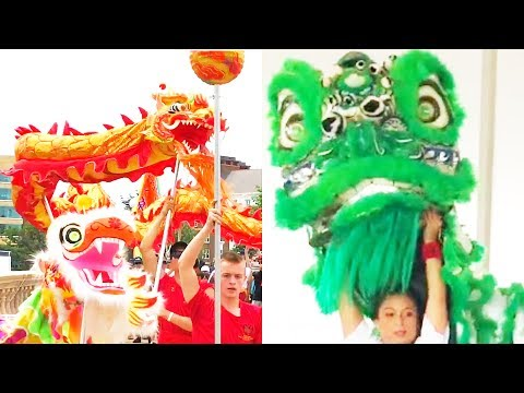2017 Opening - Boston Dragon Boat Festival & Lion Dance Performance