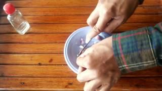 Cara Mengatasi Perut Kembung Dengan Menggunakan Bawang Merah (Dijamin Berkhasiat)