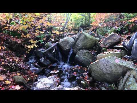 George W. Aiken Little falls