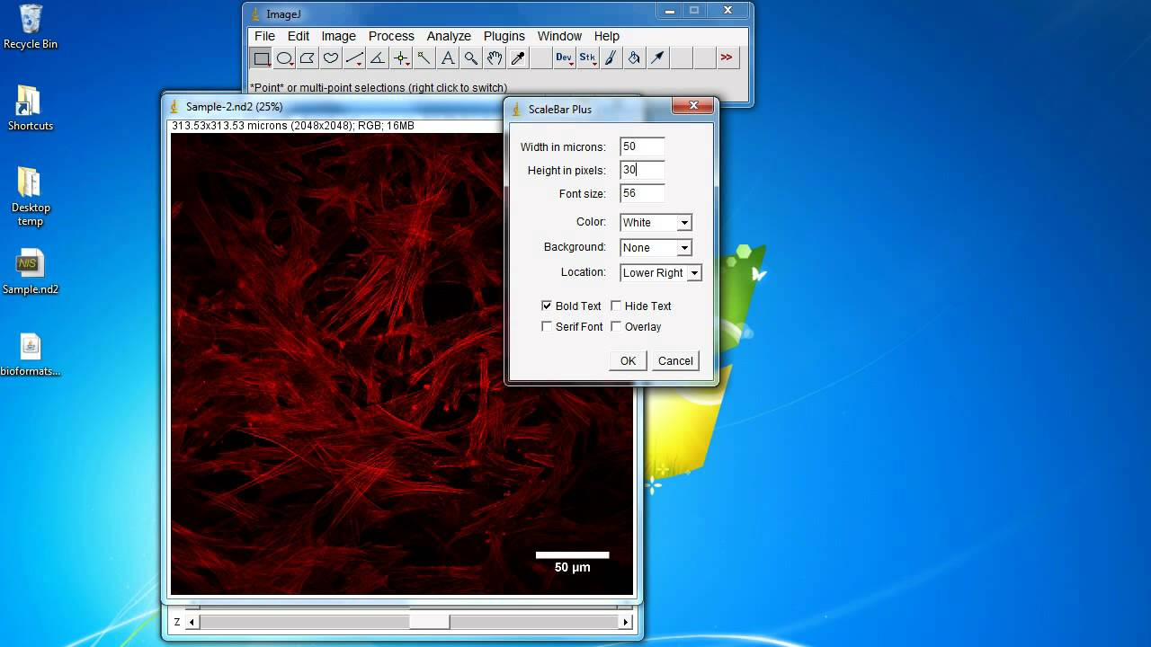 ImageJ Tutorial: How to add scale bar