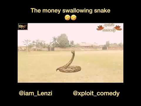 Download The money swallowing snake. Nigeria's mystery.