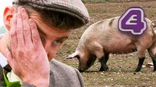 Bride Is NOT Happy With Her Pig-Themed Wedding! | Don't Tell The Bride