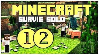 Minecraft Survie 1.14 : Je prépare l'Ender Dragon - Ep12