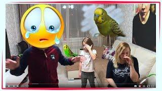 Что с моим попугаем ((( 😭  Почему умирает волнистый попугай ?