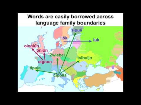 History and Geography of Languages - Festival delle Scienze 2014 in Rome