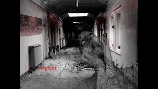 Безумные призраки: Больница, где сходят с ума ( сезон 1, выпуск 6 )