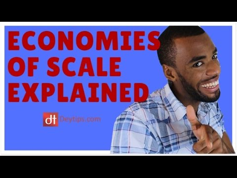 Economies of scale EASILY explained (eBay business example) | Economies of scale definition